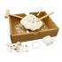 ערכה לחפירת צדפות והכנת צמיד מבית בוקי צרפת